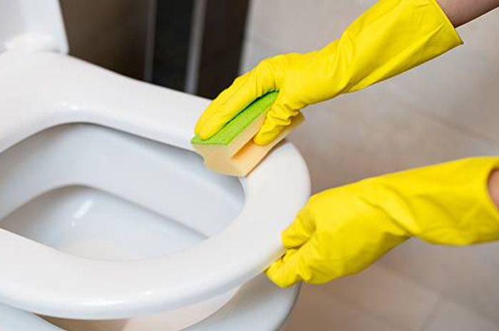 Adakah Manfaat Menjaga Toilet untuk Kesehatan? Cek Alasannya!
